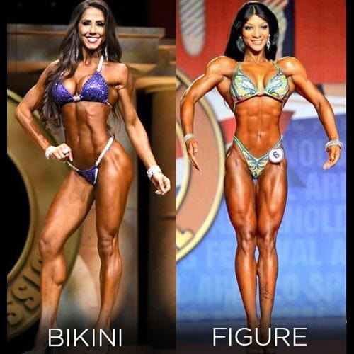 Difference between physique competitive divisions